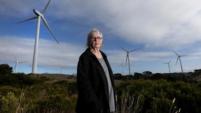 Rite-On Wind Turbine Victim